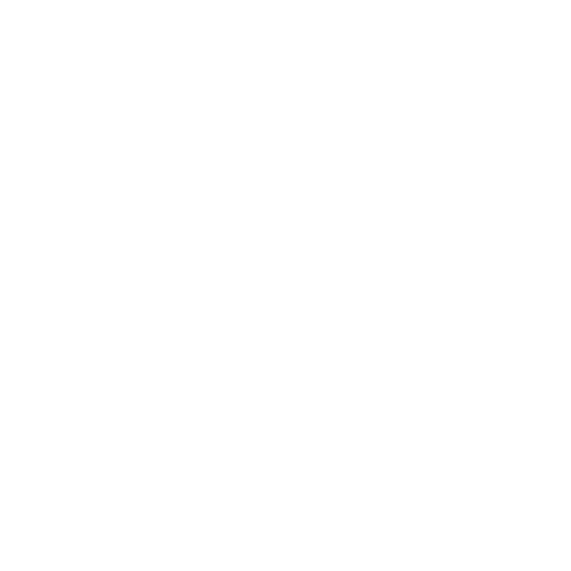 AAHSFF 2021 BEST OVERALL Nominee