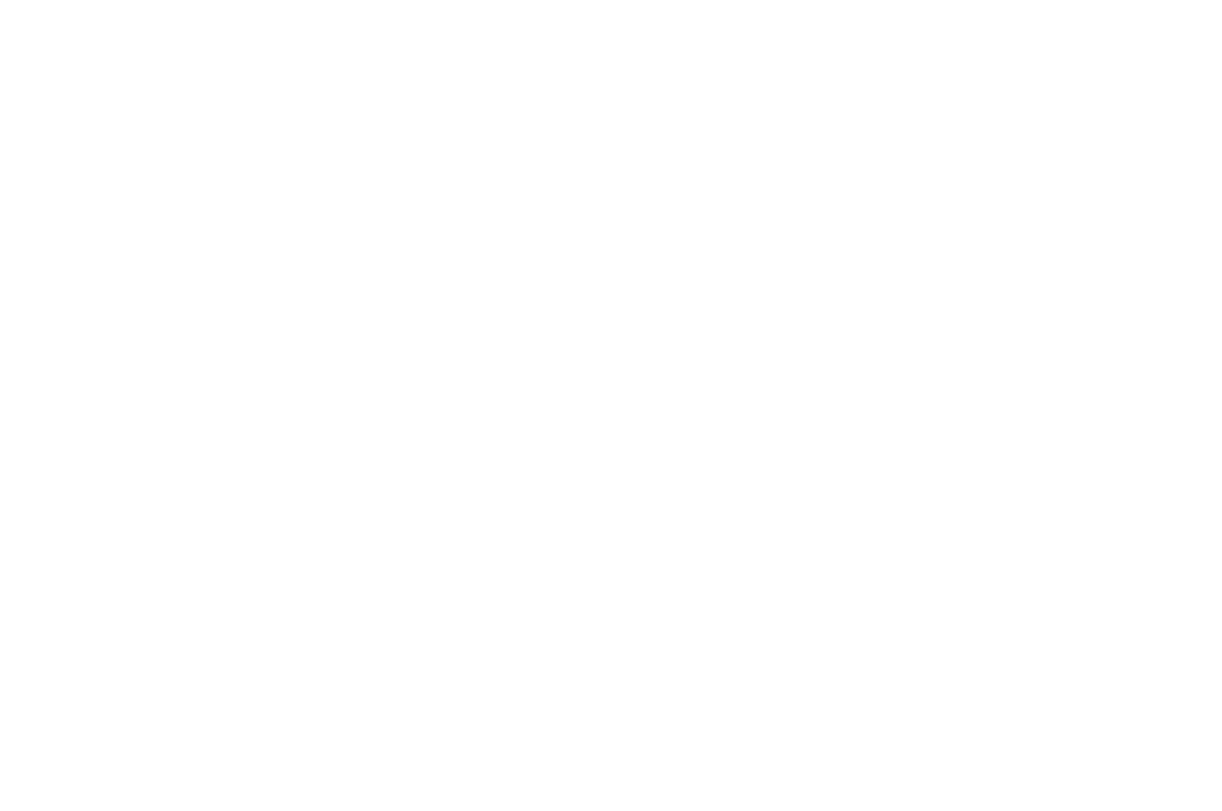 OFFICIAL SELECTION - Lone Star Film Festival - 2021
